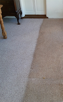 Carpet showing a visible difference between a cleaned side and an uncleaned side.