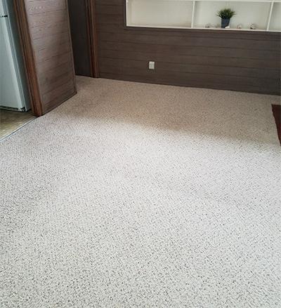 Carpet Cleaning Services La Jolla CA